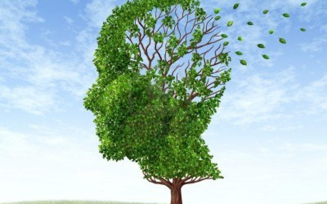 Live-in care article on memory loss